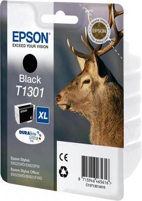 Картридж Epson C13T13014010 - общий вид