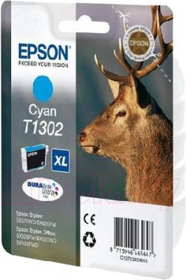 Картридж Epson C13T13024010 - общий вид