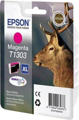 Картридж Epson C13T13034010 - общий вид