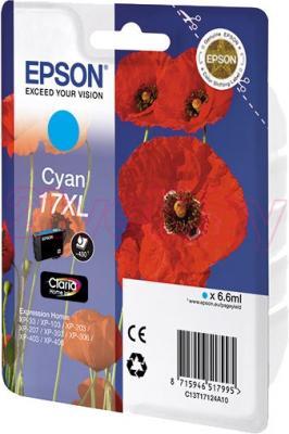 Картридж Epson C13T17124A10 - общий вид