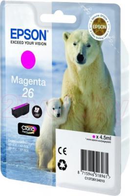 Картридж Epson C13T26134010 - общий вид