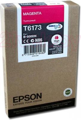 Картридж Epson C13T617300 - общий вид
