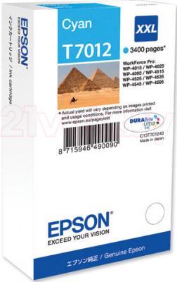 Картридж Epson C13T70124010 - общий вид
