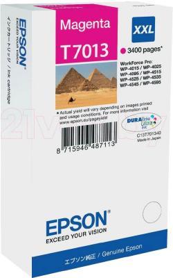 Картридж Epson C13T70134010 - общий вид