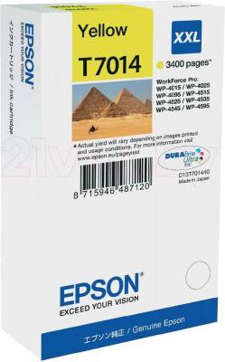 Картридж Epson C13T70144010 - общий вид