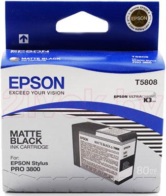 Картридж Epson C13T580800 - общий вид