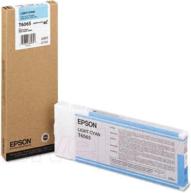 Картридж Epson C13T606500 - общий вид