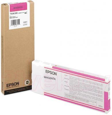 Картридж Epson C13T606300 - общий вид