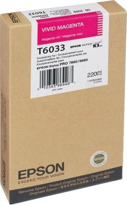 Картридж Epson C13T603300 - общий вид