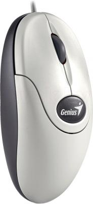 Мышь Genius NetScroll 110 (White) - общий вид