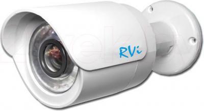 IP-камера RVi IPC41DNS - общий вид