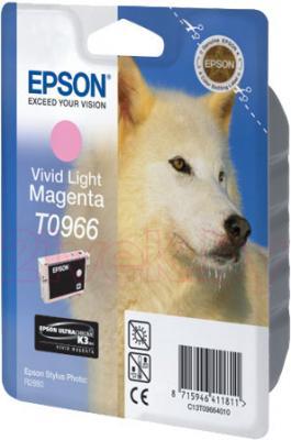 Картридж Epson C13T09664010 - общий вид