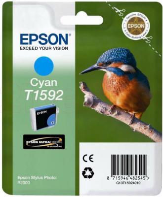 Картридж Epson C13T15924010 - общий вид