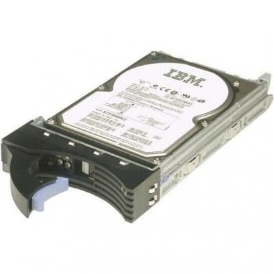 Жесткий диск IBM 300GB (49Y6173) - общий вид