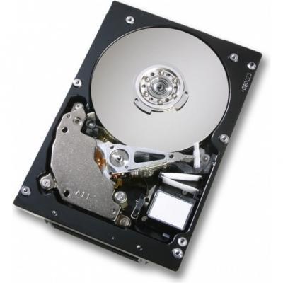 Жесткий диск IBM Express 146GB (44W2194) - общий вид