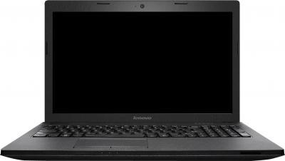 Ноутбук Lenovo IdeaPad G505A (59410780) - фронтальный вид