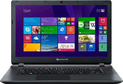 Ноутбук Packard Bell ENTF71BM-C36P (NX.C3SER.007) - фронтальный вид