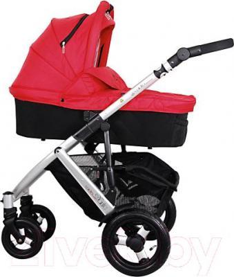 Детская универсальная коляска Coletto Dante 3 в 1 (красный) - люлька