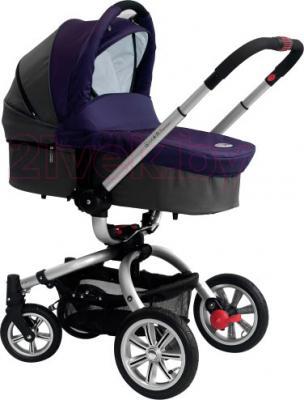 Детская универсальная коляска Coletto Marco Polo 3 в 1 (фиолетовый) - люлька