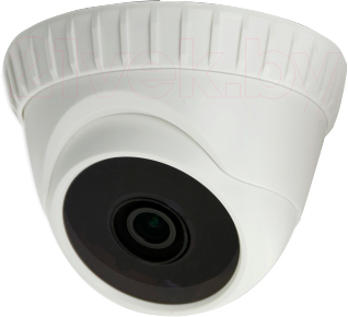 IP-камера AVTech AVC153 - общий вид