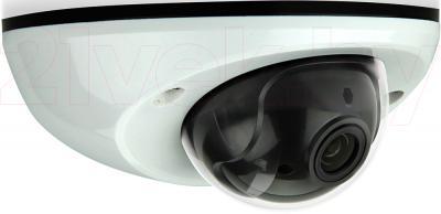 IP-камера AVTech AVM311 - общий вид