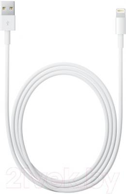 Переходник Apple MD819ZM/A - общий вид