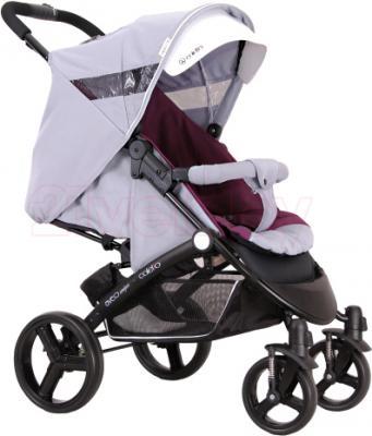 Детская прогулочная коляска Coletto Aveo Comfort (Gray) - общий вид