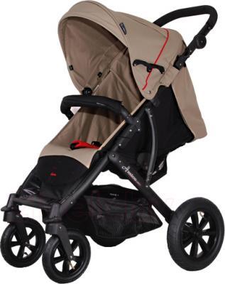 Детская прогулочная коляска Coletto Amico AW (Beige) - общий вид