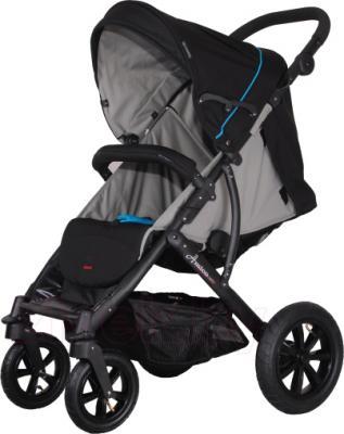 Детская прогулочная коляска Coletto Amico AW (Black) - общий вид