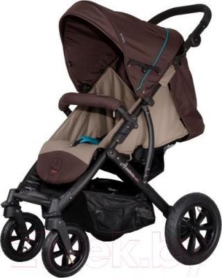 Детская прогулочная коляска Coletto Amico AW (Dark Brown) - общий вид