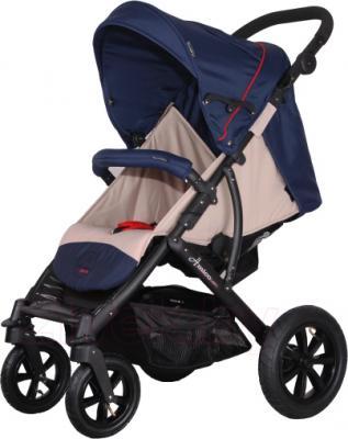 Детская прогулочная коляска Coletto Amico AW (Dark Blue) - общий вид