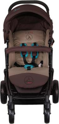 Детская прогулочная коляска Coletto Amico (Dark Brown) - вид спереди