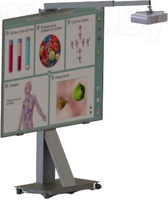 Стойка для интерактивной доски Classic Solution UMS-2 - общий вид