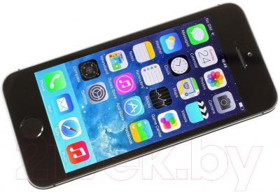 Смартфон Apple iPhone 5s (16GB, серый)