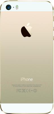 Смартфон Apple iPhone 5s (16GB, золотой) - задняя панель