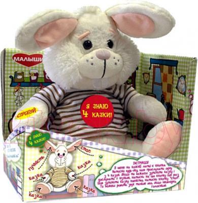 Интерактивная игрушка Dream Makers Заяц-сказочник (ЗСК01\М) - общий вид