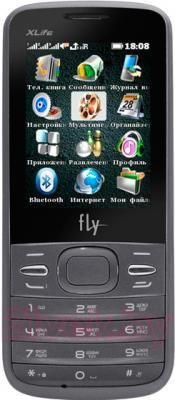 Мобильный телефон Fly TS110 (Silver) - общий вид