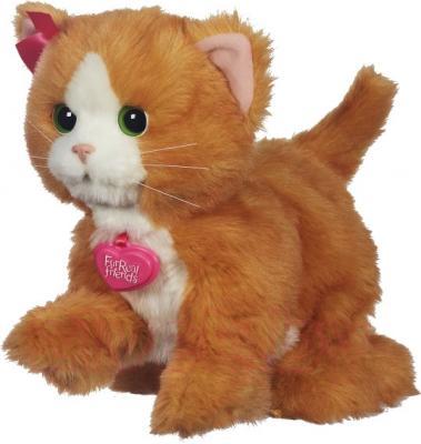 Интерактивная игрушка Hasbro FurReal Friends Котенок Дэйзи (A2003) - общий вид