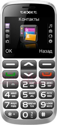 Мобильный телефон TeXet TM-B313 (Silver) - общий вид