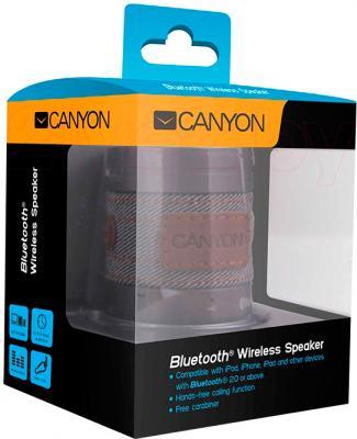 Портативная колонка Canyon CNS-CBTSP1S - в упаковке