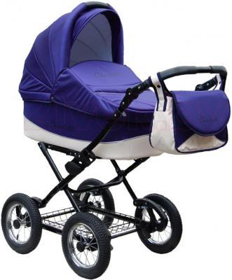 Детская универсальная коляска Expander Charlotte 2 в 1 (73) - общий вид