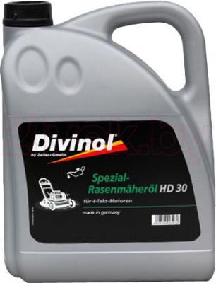 Масло Divinol HD30 (1л) - общий вид