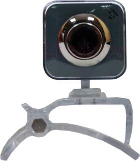 Веб-камера DigiOn PTWEB21GS - общий вид