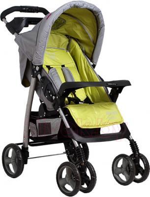 Детская прогулочная коляска Coto baby Blues (05) - общий вид