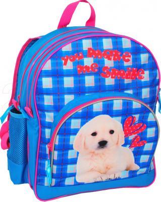 Школьный рюкзак Paso 13-157B - общий вид