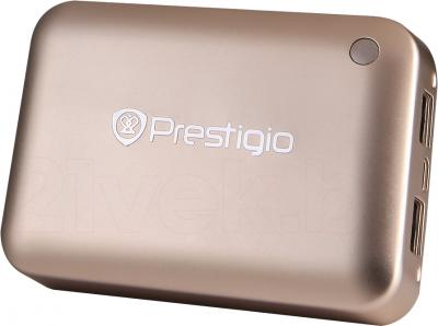 Портативное зарядное устройство Prestigio PBC02100CP - общий вид