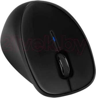 Мышь HP Wireless Comfort H2L63AA - общий вид