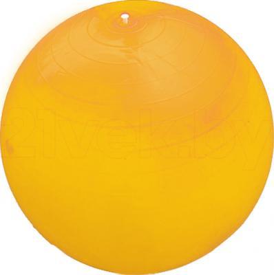 Фитбол гладкий Arctix 339-11550 - общий вид