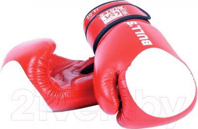 Боксерские перчатки Bulls TT-2001-14