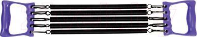 Эспандер Arctix 353-12221 - общий вид